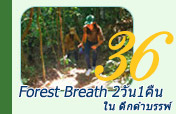 Forest Breath 2วัน1คืน