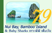Nui Bay Bamboo Island and Baby Sharks เกาะพีพี