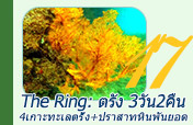 The Ring: ตรัง 3วัน2คืน